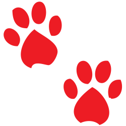 Logo Animal Rescue Bosnia